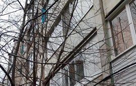 Кронирование деревьев на придомовой территории по адресу б. Гагарина, 58г