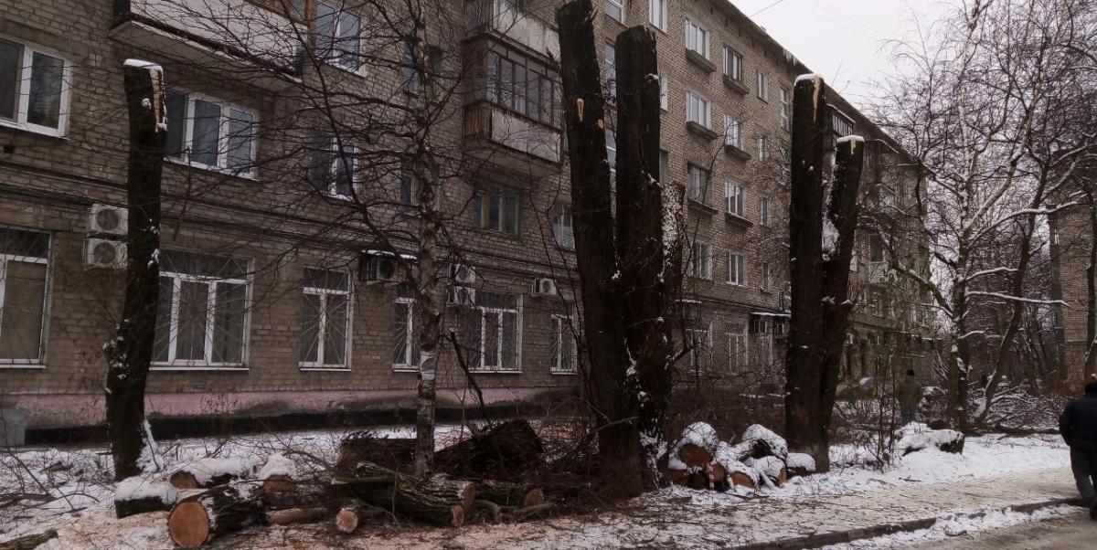Кронирование деревьев на придомовой территории